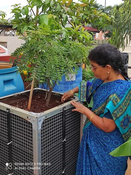 Gardening on the terrace